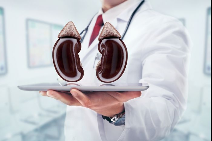 Онлайн-семинар «Поражение почек при сахарном диабете» » Медвестник